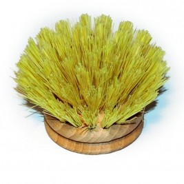 Replacement Head, Wooden Dish Brush, 40mm